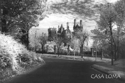 CanadianCulturething postcard
